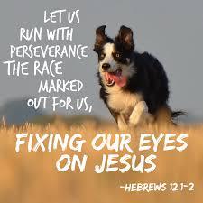 hebrews 12.2